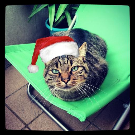 Bob de Noël
